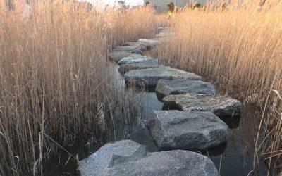 un percorso di sassi attraversa precariamente un corso d'acqua