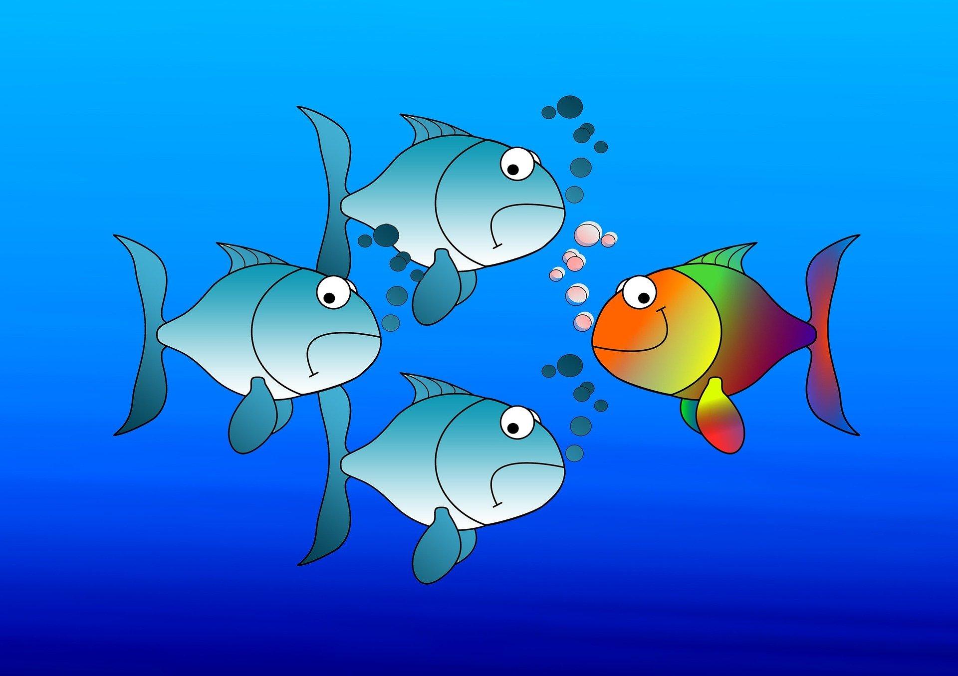 tre pesci blu tristi vanno a destra mentre un pesce colorato sorride e va a sinistra