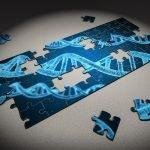 Quando e come è possibile una diagnosi delle MME?