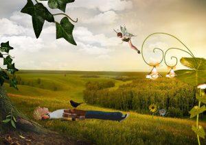 un bambino disteso in un campo con accanto libri ed un uccello mentre in cielo vola una fatina