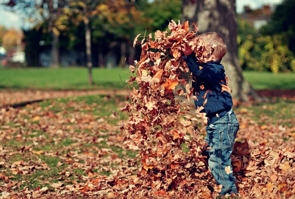 un bambino gioca con le foglie in un giardino lanciandole