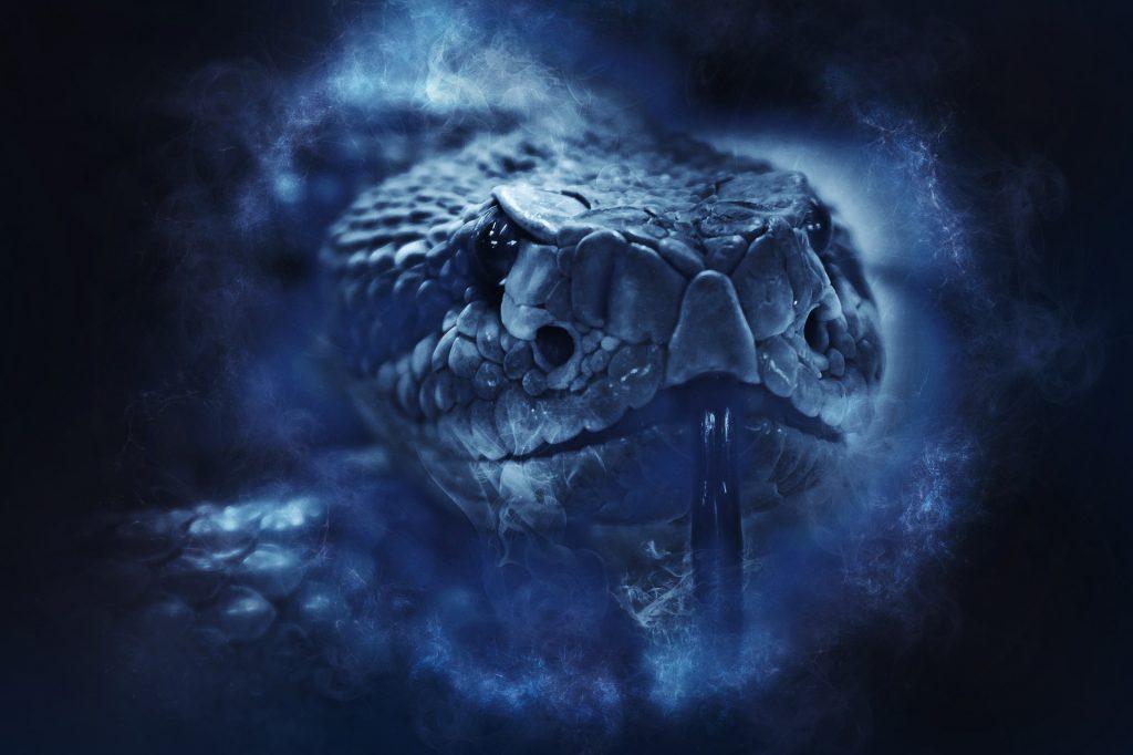 primo piano di un serpente a sonagli, foto in blu
