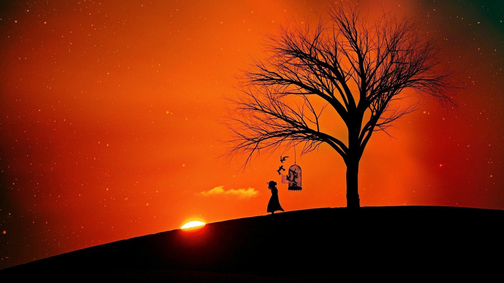 al tramonto una bambina libera degli uccelli da una gabbia appesa ad un albero spoglio