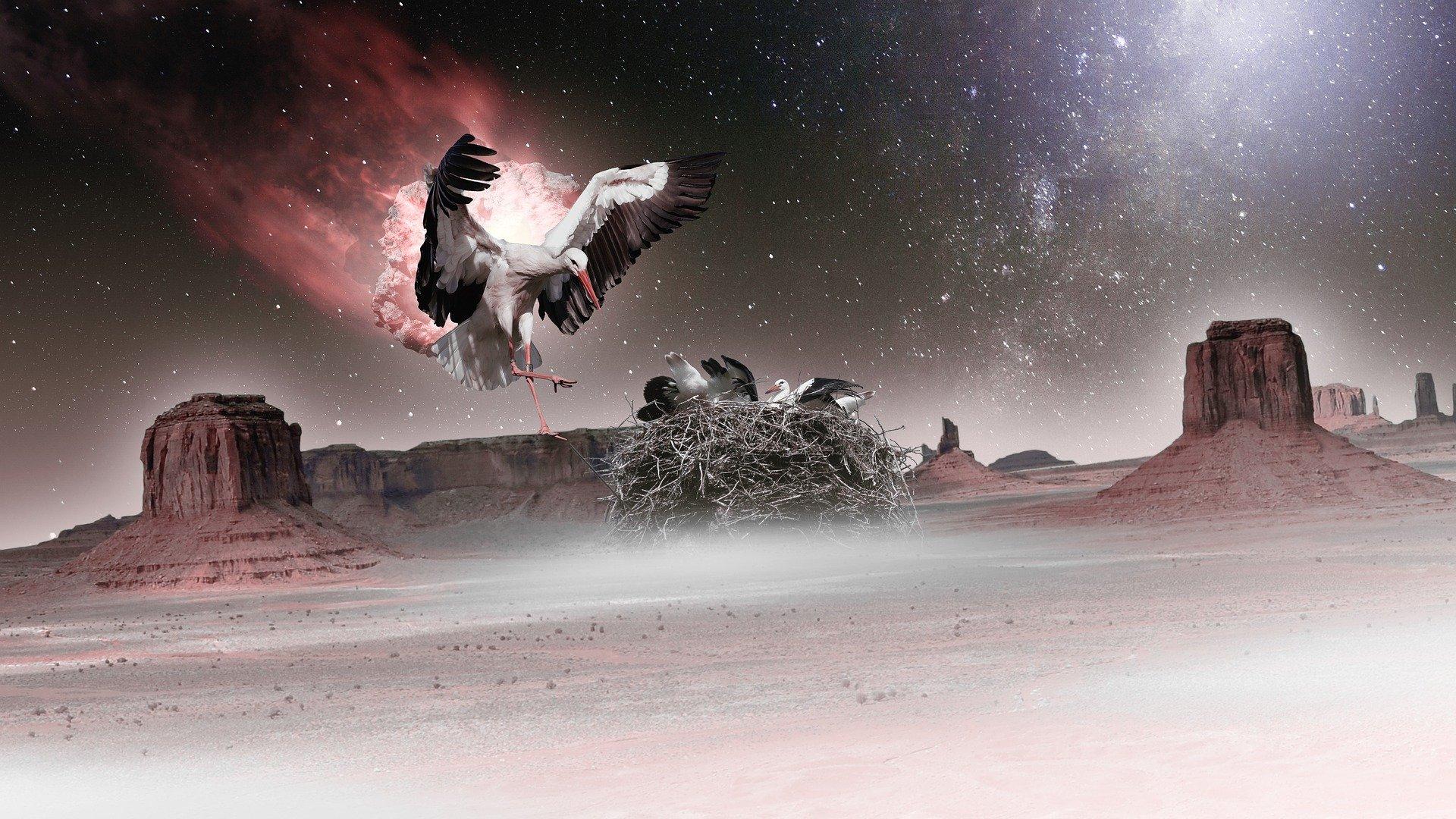 paesaggio desertico, un'aquila vola verso il suo nido dove ci sono i suoi piccoli per proteggerli da una palla infuocata che arriva dal cielo