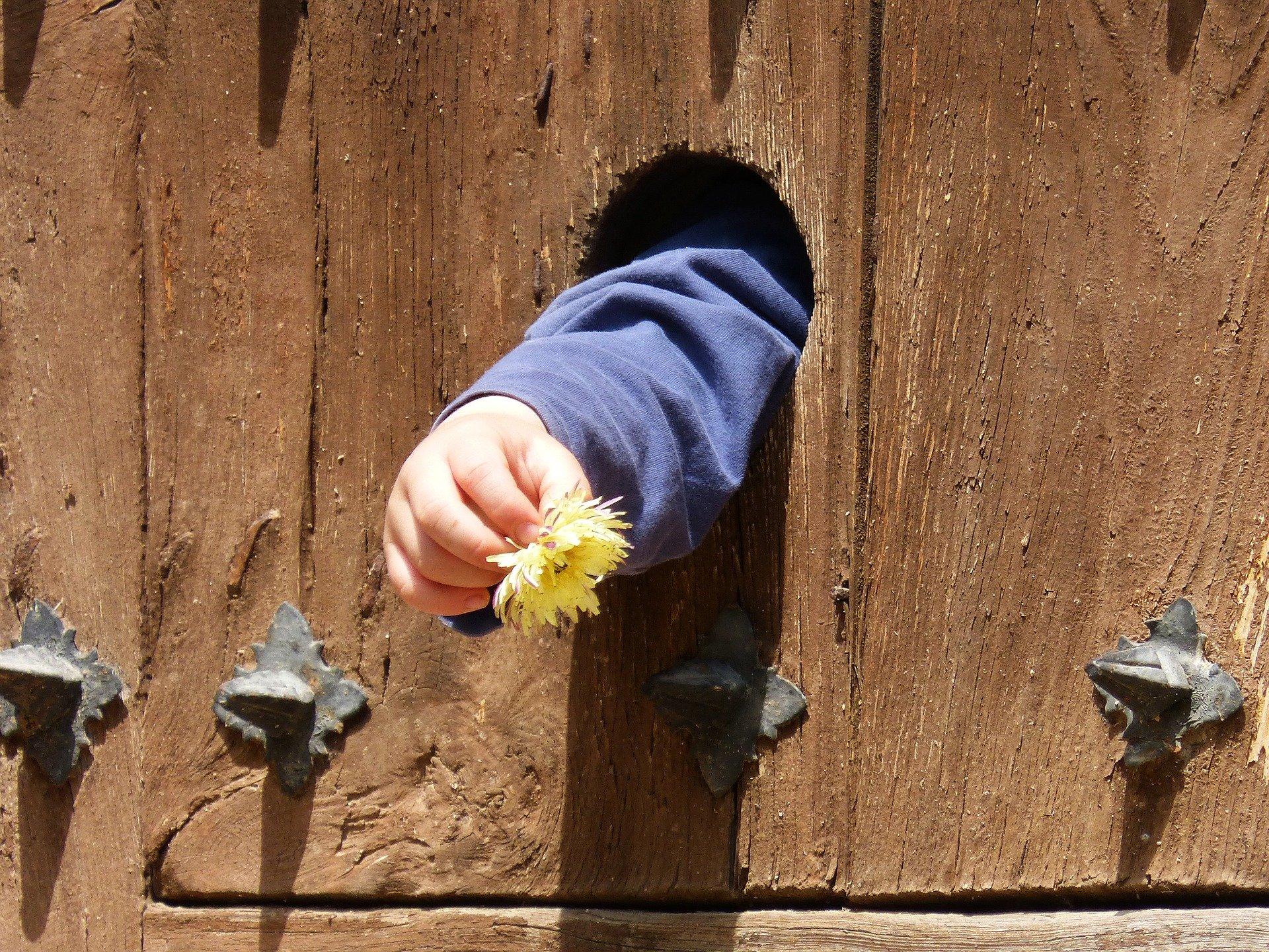 dal buco di una porta di legno esce la mano di un bambino che tiene un fiore giallo