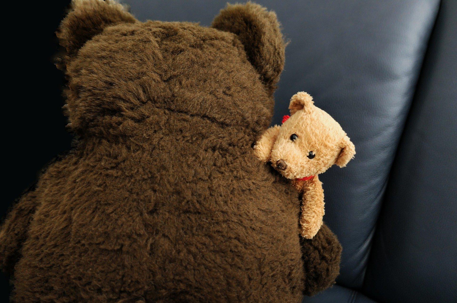 un orso grande e marrone di spalle che abbraccia un piccolo orsacchiotto chiaro che gli spunta dalla spalla
