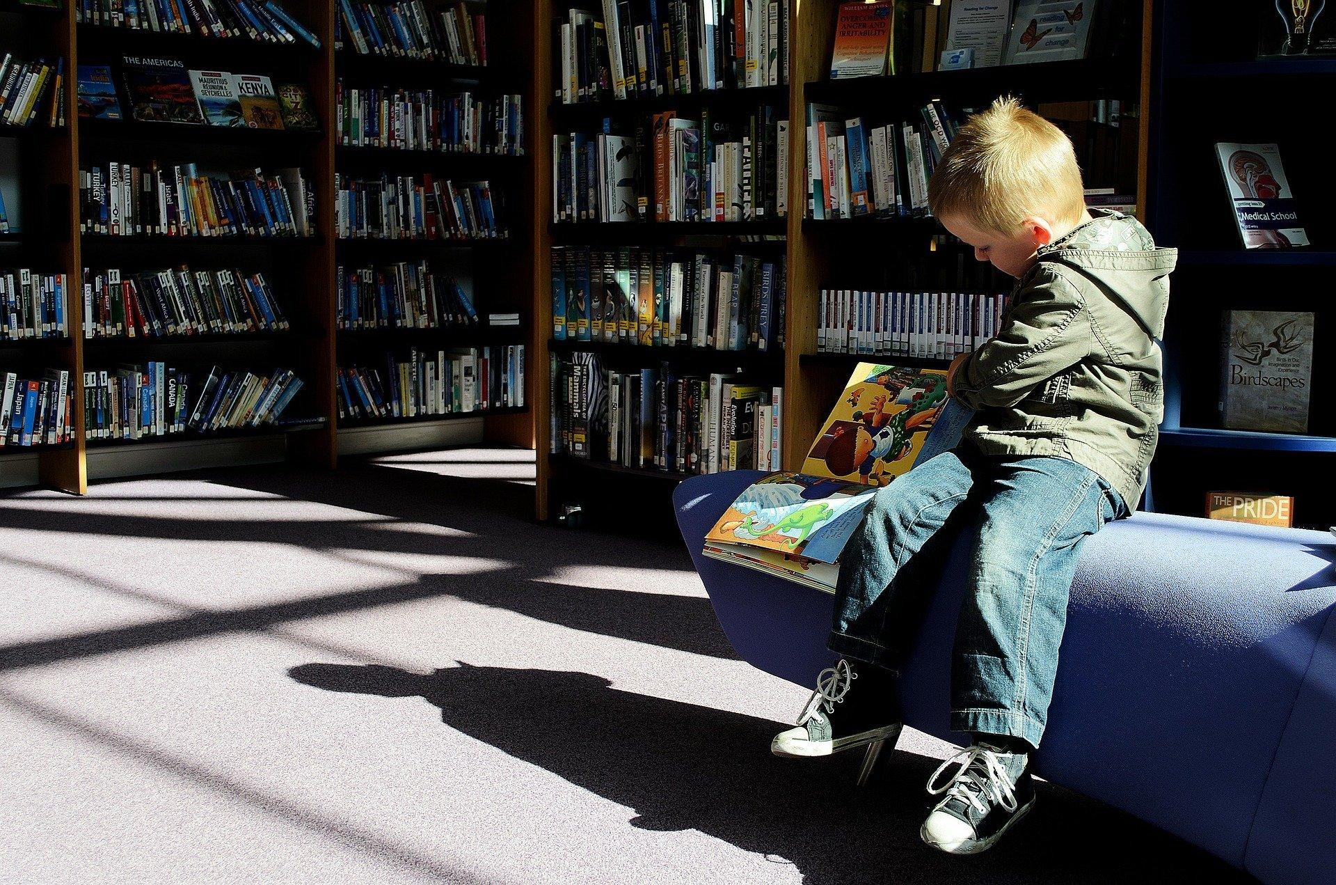 un bambino in una libreria sfoglia un libro