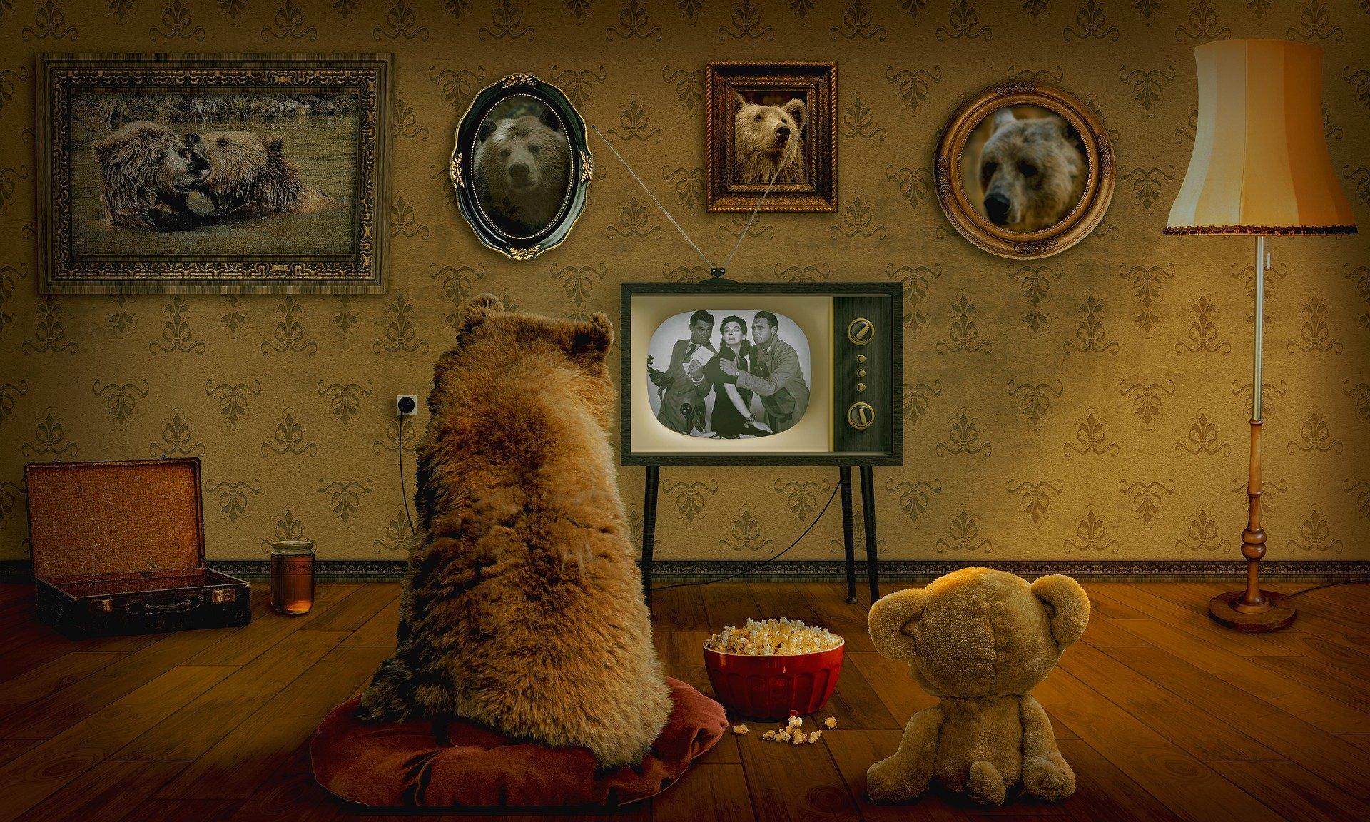 un orso e un orsacchiotto di spalle mentra guardano un vecchio programma alla tv mangiando pop corn