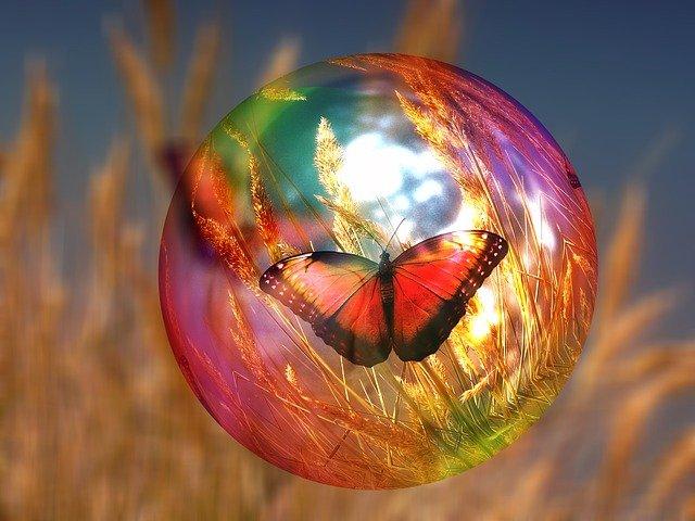Una farfalla è immobile chiusa in una bolla di sapone