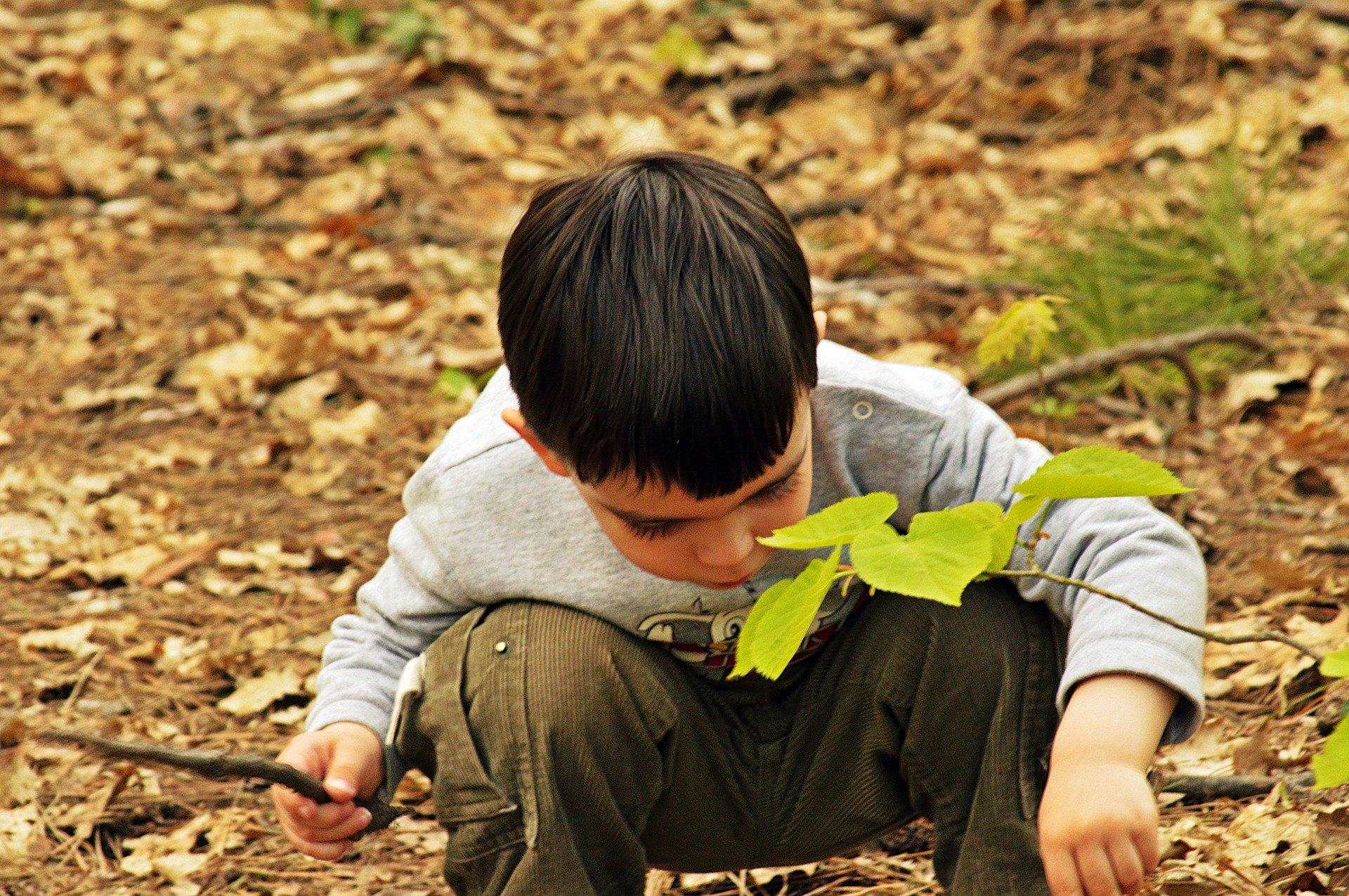 bambino che gioca con le foglie secche a terra