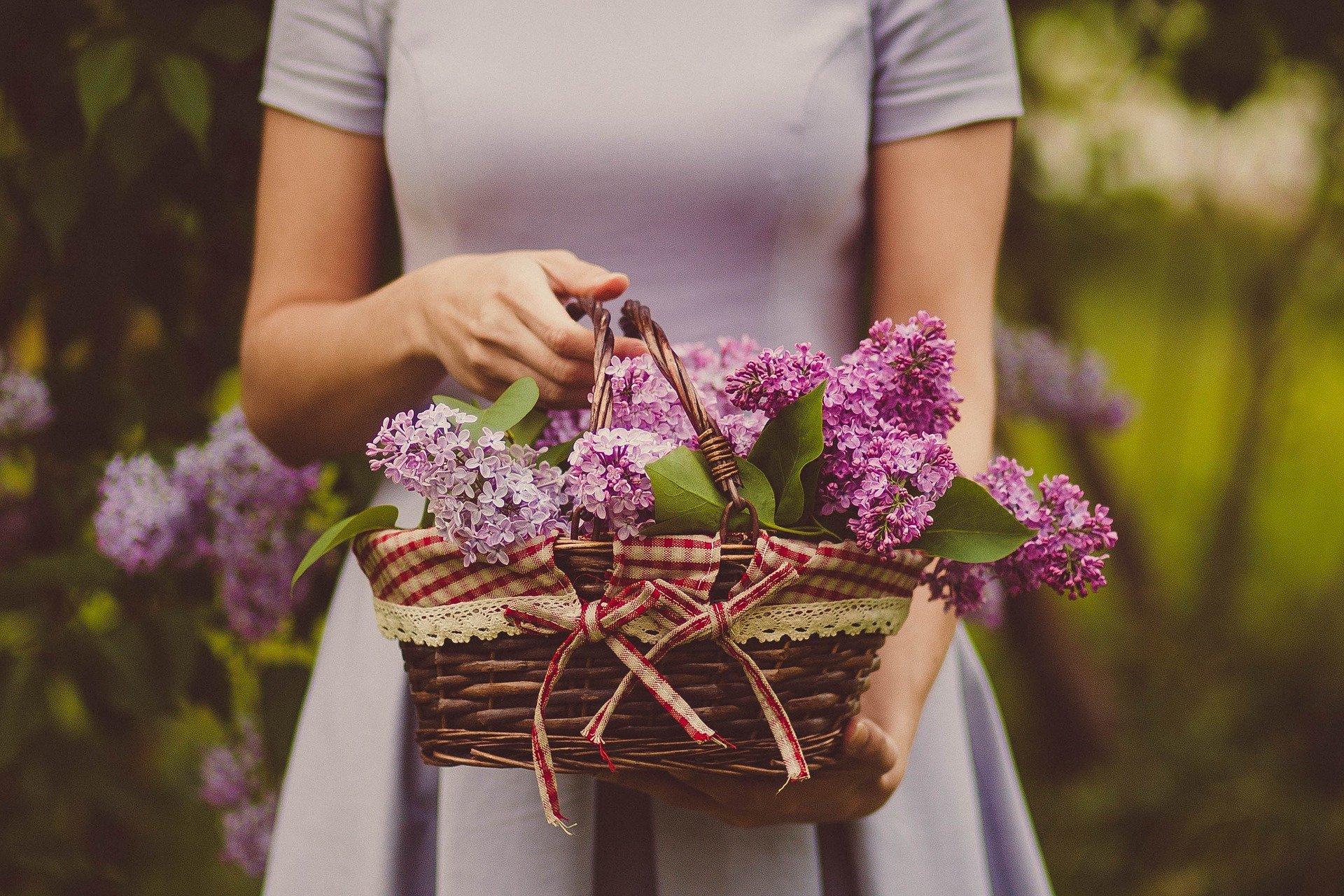 mezzo busto di donna che tiene in mano un cesto di vimini pieno di fiori di glicine
