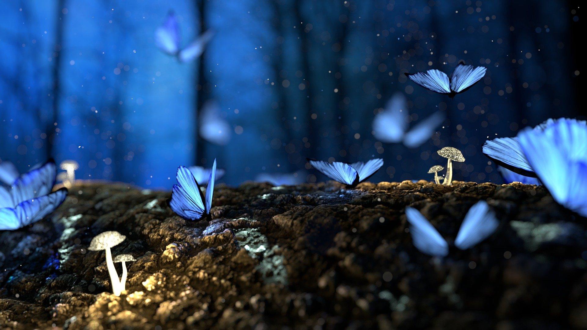 un bosco con in primo piano farfalle blu
